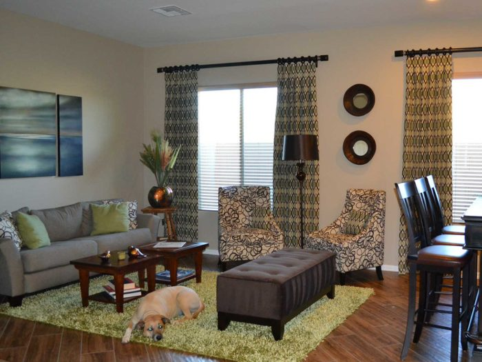 Living space with a pet dog